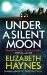 Under a Silent Moon (Detective Inspector Louisa Smith) - Elizabeth Haynes