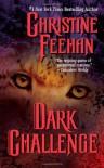 Dark Challenge (Carpathians, #5) - Christine Feehan
