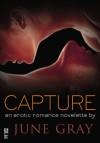 Capture (Disarm #6) - June Gray