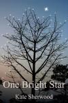 One Bright Star (Dark Horse, #3.1) - Kate Sherwood