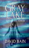 Gray Lake: A Novel - David  Bain