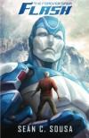 Flash (The Forever Saga, #1) - Sean C. Sousa