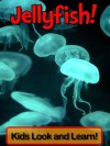Jellyfish! Learn About Jellyfish and Enjoy Colorful Pictures - Look and Learn! (50+ Photos of Jellyfish) - Becky Wolff