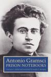 Prison Notebooks, Vol 3 - Antonio Gramsci, Joseph Buttigieg