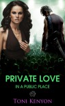 Private Love in a Public Place - Toni Kenyon
