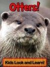 Learn About Otters and Enjoy Colorful Pictures - Look and Learn! (50+ Photos of Otters) - Becky Wolff