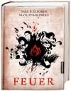 Engelsfors-Trilogie 02. Feuer - 'Sara Bergmark Elfgren',  'Mats Strandberg'