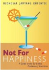 Not For Happiness: A Guide to the So-Called Preliminary Practices - Dzongsar Jamyang Khyentse