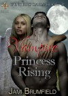 Vampire Princess Rising - Jami Brumfield