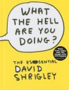 What the Hell Are You Doing?: The Essential David Shrigley - David Shrigley