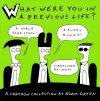What Were You in a Previous Life?: A Cartoon Collection - Adam Green