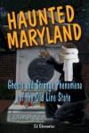 Haunted Maryland: Ghosts and Strange Phenomena of the Old Line State - Ed Okonowicz