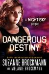 Dangerous Destiny: A Night Sky novella - Suzanne Brockmann, Melanie Brockmann