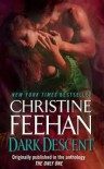 Dark Descent - Christine Feehan, Rebecca  Cook