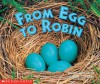From Egg To Robin - Susan Canizares, Betsey Chessen