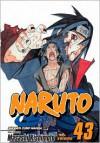 Naruto, Vol. 43:  The Man with the Truth (Naruto, #43) - Masashi Kishimoto