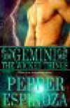 Gemini: The Wicked Things (Boys of the Zodiac #3) - Pepper Espinoza