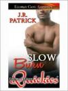 Slow Burn - J.R. Patrick