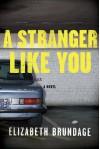 A Stranger Like You - Elizabeth Brundage