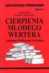 Cierpienia młodego Wertera - zeszyt 74 - Urszula Lementowicz