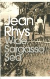 Wide Sargasso Sea - Jean Rhys, Angela Smith