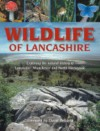 Wildlife of Lancashire: Exploring the Natural History of Lancashire, Manchester and North Merseyside - Geoff Morries Morries