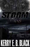 Car Nex: Storm (The Car Nex Story Series Book 3) - Kerry E. B. Black, Terry M. West