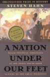 A Nation Under Our Feet: Black Political Struggles in the Rural South from Slavery to the Great Migration - Steven Hahn