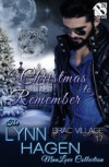 A Christmas to Remember - Lynn Hagen