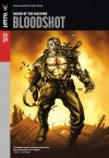 Valiant Masters: Bloodshot Volume 1 - Blood of the Machine HC - Don Perlin, Kevin VanHook, Cory Levine