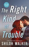 The Right Kind of Trouble - Shiloh Walker
