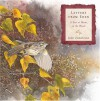 Letters From Eden: A Year at Home, in the Woods - Julie Zickefoose, Sy Montgomery