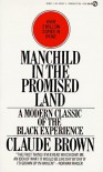 Manchild in the Promised Land: A Modern Classic of the Black Experience - Claude Brown