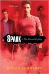 Spark (Brigid Kemmerer's Elemental Series #2) - Brigid Kemmerer