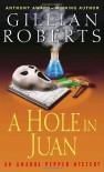 A Hole in Juan: An Amanda Pepper Mystery (Amanda Pepper Mysteries) - Gillian Roberts