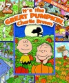 Look and Find: It's the Great Pumpkin, Charlie Brown - Charles M. Schulz