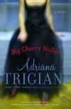 Big Cherry Holler  - Adriana Trigiani