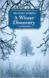 A Winter Discovery - Michael Baron