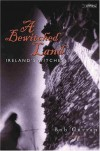 A Bewitched Land: Ireland's Witches - Bob Curran