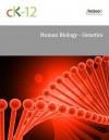 Human Biology - Genetics - CK-12 Foundation