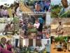 Subsistence Marketplaces - Madhu Viswanathan