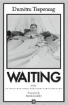Waiting: Stories - Dumitru Tsepeneag, Patrick Camiller