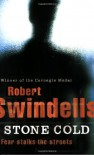 Stone Cold (Puffin Teenage Fiction) - Robert Swindells