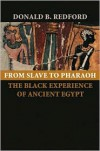 From Slave to Pharaoh: The Black Experience of Ancient Egypt - Donald B. Redford