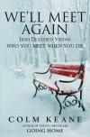 We'll Meet Again: Irish Deathbed Visions—Who You Meet When You Die - Colm Keane