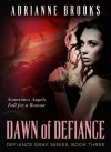 Dawn of Defiance - Adrianne Brooks