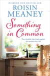 Something in Common - Roisin Meaney