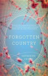 Forgotten Country - Catherine Chung
