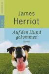 Auf den Hund gekommen - James Herriot