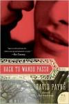 Back to Wando Passo: A Novel - David Payne